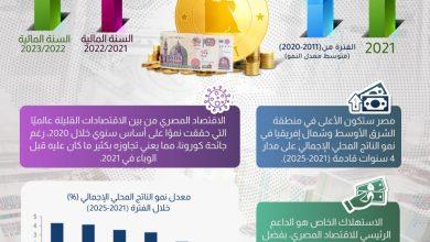 """صورة وكالة """"فيتش """": مصر نقطة مضيئة بين اقتصادات منطقة الشرق الأوسط وشمال إفريقيا"""