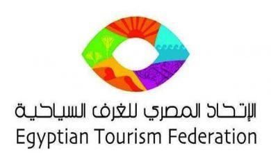 صورة الوصيف :- اهمية تجهيز القطاع السياحي لتطبيق منظومة  الفاتورة الاليكترونية لمواكبة التطور الرقمي للدولة