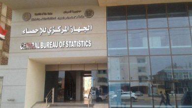 صورة جهاز الإحصاء يعلن: 876 ألف عقد زواج في مصر عام 2020
