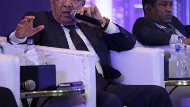صورة حسن عبد العزيز: توجه جديد للحكومة المصرية لدعم توسع الشركات المصرية في أفريقيا