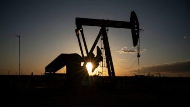 صورة أوبك تتوقع استمرار الطلب العالمي على النفط لفترة طويلة