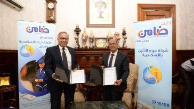 صورة ضامن ومياه الشرب بالإسكندرية توقعان عقد شراكة لدعم خدمات السداد الإلكتروني