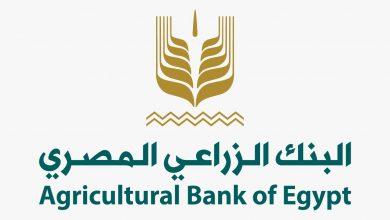 صورة البنك الزراعي المصري يتيح فتح الحسابات واصدار بطاقات ميزة مجاناً