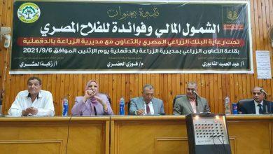 صورة البنك الزراعي المصري ينظم فعاليات بكافة المحافظات للتوعية بأهمية الشمول المالي