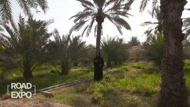 صورة شاهد كيف يحاول إكسبو 2020 دبي إلهام زواره لإحداث تغيير في مجتمعاتهم