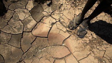 صورة توقعات بتعرض أكثر من 5 مليارات شخص لأزمة مياه بحلول 2050