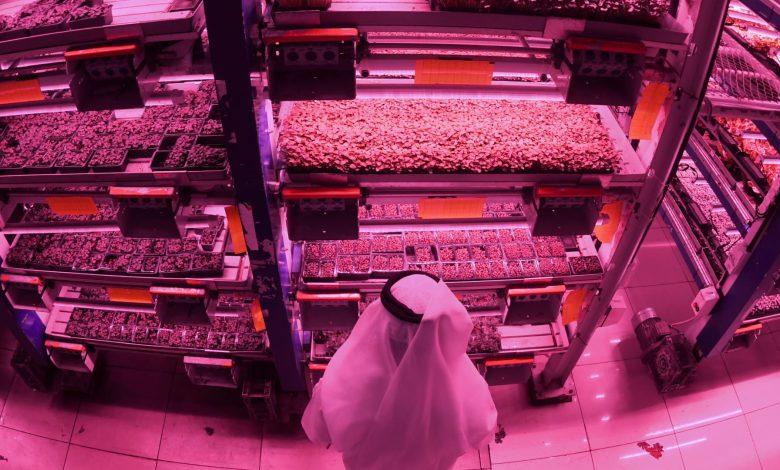 بين-السعودية-والإمارات-وقطر.-من-تصدر-الدول-العربية-بمؤشر-الابتكار-2021؟