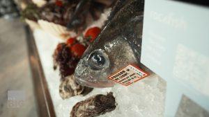 لمنع-الاحتيال.-سوق-إلكتروني-يتتبع-رحلة-الأسماك-التي-تشتريها-منذ-لحظة-اصطيادها