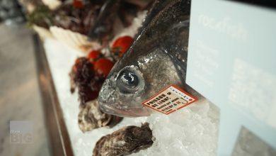 صورة لمنع الاحتيال.. سوق إلكتروني يتتبع رحلة الأسماك التي تشتريها منذ لحظة اصطيادها