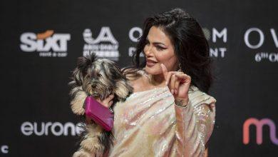 صورة دارين حداد تصطحب كلبها إلى مهرجان الجونة وتخطف عدسات الكاميرات